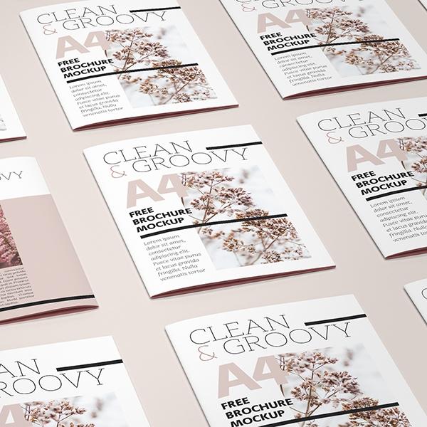موکاپ پشت و روی جلد مجله ها