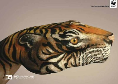 31271-wwf-world-wide-fund-for-nature-wwf-psas-wallpaper