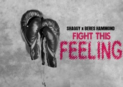 Shaggy Feat. Beres Hammond - Fight This Feeling
