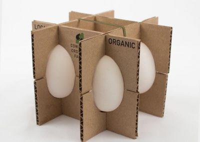 bab3dac453ecc3ff2322de4917c76f09--egg-packing-egg-package-design