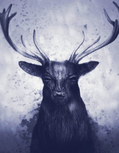 black_deer_by_ruslankadiev-d4fihci