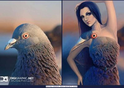 pigeon_girl_by_darey_dawn