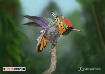 tufted_coquette_hummingbird__digital_painting__by_rick_lilley-d5dv6xm