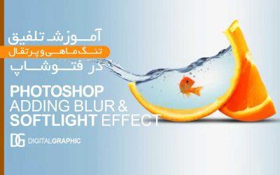 ۱- آموزش تلفیق تنگ ماهی و پرتقال
