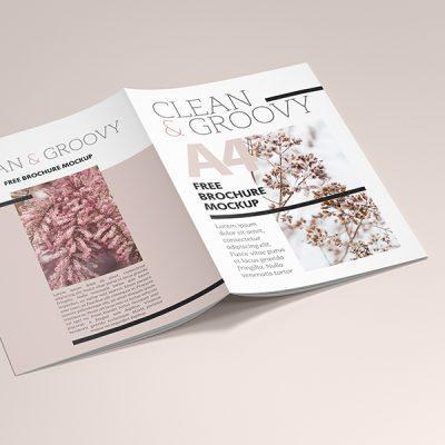موکاپ جلد پشت مجله