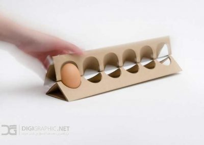 Egg-Carton-In-Use-e1343400881566