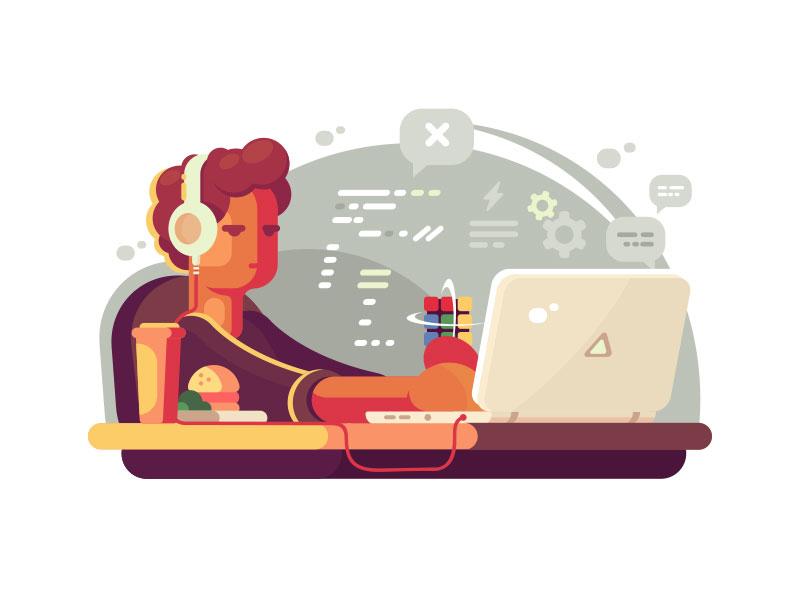 توسعه دهنده وب چه کسی است؟